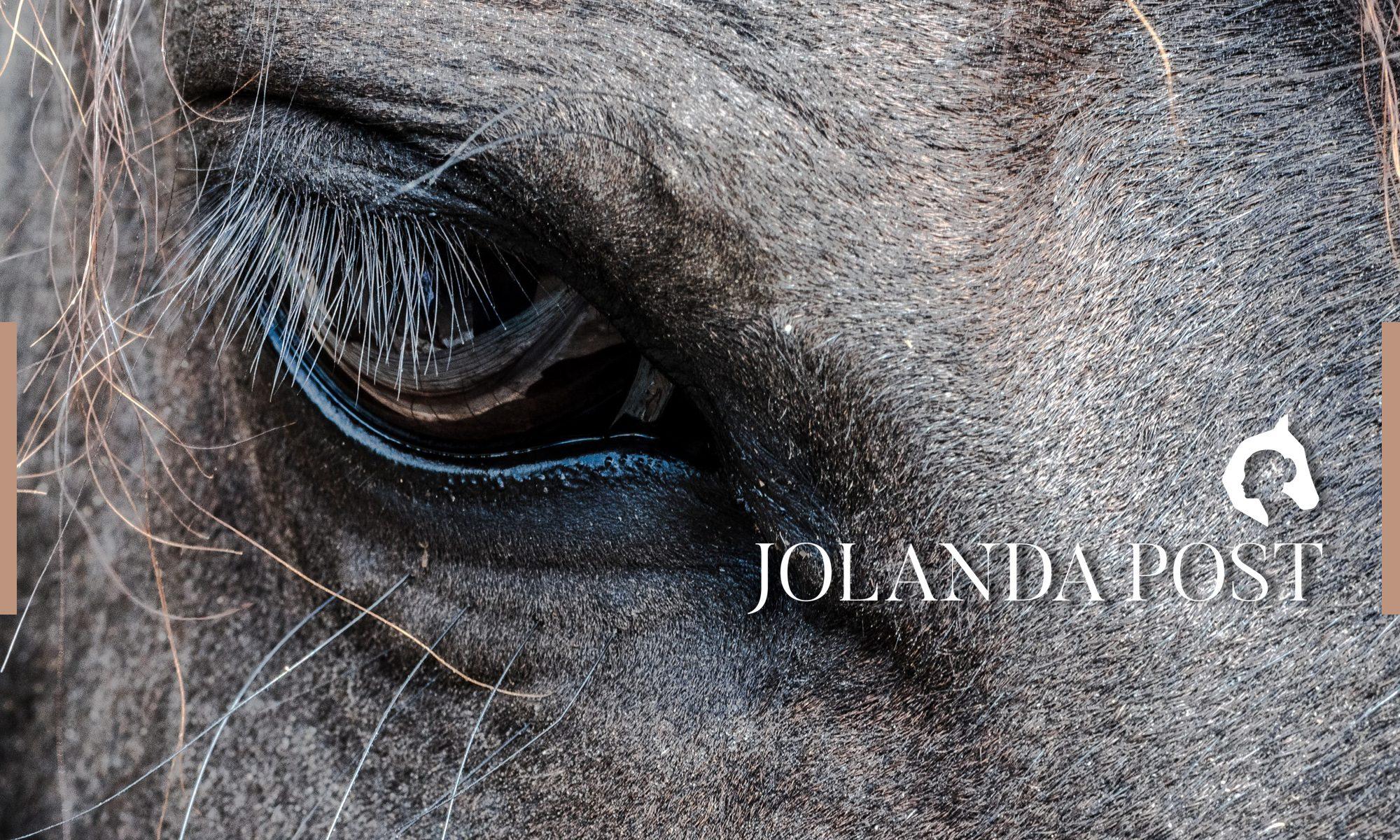 Jolanda Post